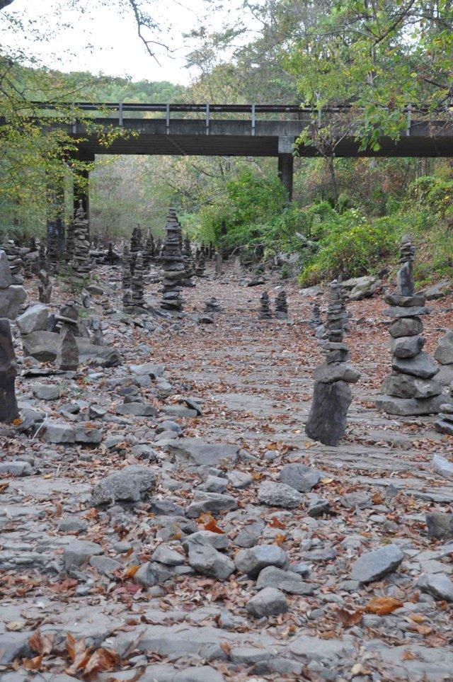 Patton Creek dry 10-20-16 (10)