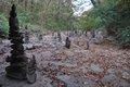 Patton Creek dry 10-20-16 (16)