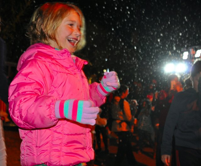 Hoover Christmas tree lighting 2016-35
