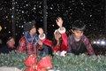 Hoover Christmas tree lighting 2016-45