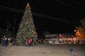 Hoover Christmas tree lighting 2016-50