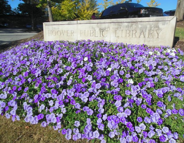 Hoover Public Library sign