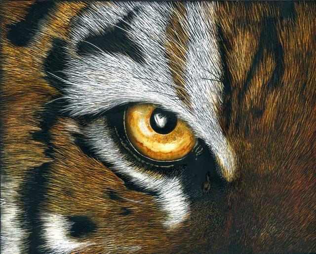 SUN-FEAT-Artist-Rick-Plasters_Tiger_Eye.jpg