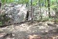 HV-COVER-Moss-Rock-boulder-field-crack-before.jpg