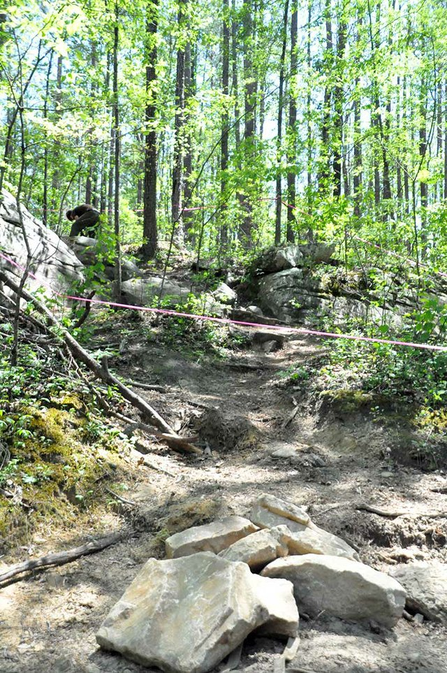 HV-COVER-Moss-Rocks-Boulders-Stairs-Before.jpg