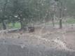 Monte D'Oro flooding 7-26-17 (4)