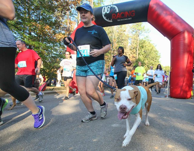 EVENTS----Run-Roundup---Head-Over-Teal-2016.jpg
