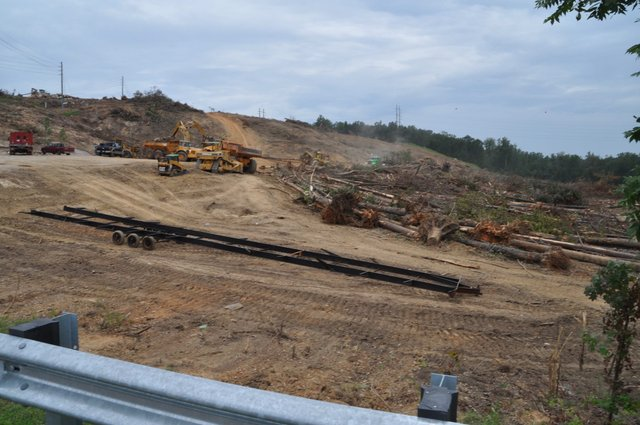Stadium Trace Village clearing 8-29-17 (1)