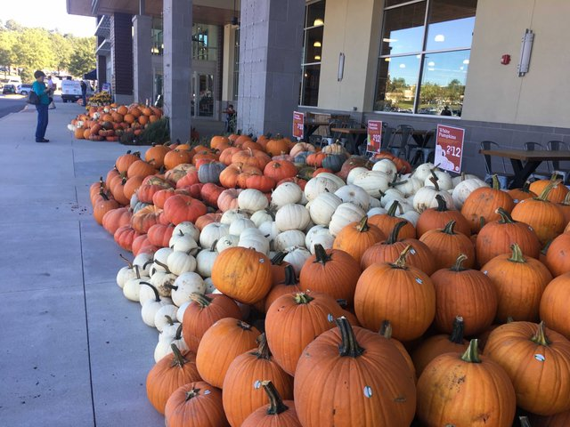 Whole Foods Riverchase 10-18-17 (27)