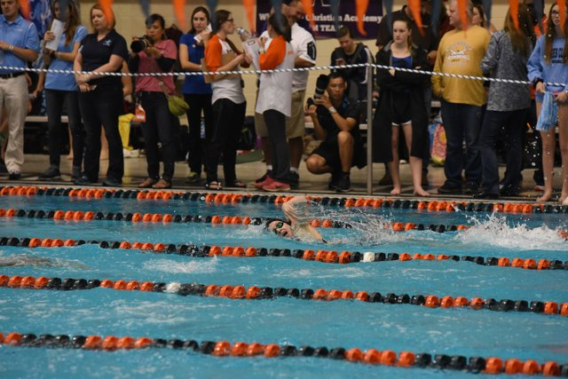 HV SPORTS SwimDive-32.jpg
