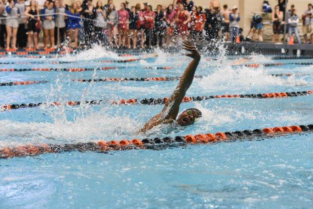 HV SPORTS SwimDive.jpg