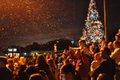 2014 Christmas Tree Lighting Ceremony