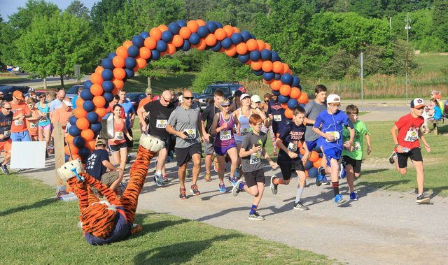 HSUN-EVENTS-Aubie-5K.jpg