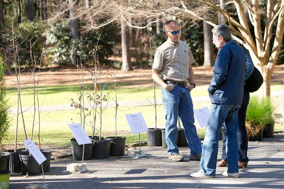 North East Florida Arbor Day Tree Giveaway