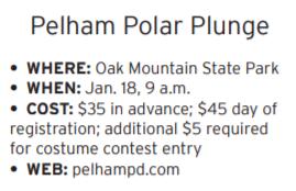 Polar Plunge.png