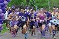 280-FEAT-Purplestride-3.jpg