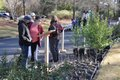 210306_Hoover_Arbor_Day1