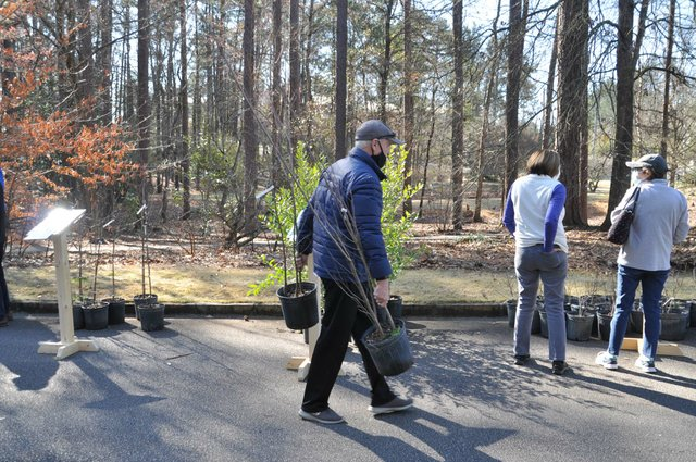 210306_Hoover_Arbor_Day8