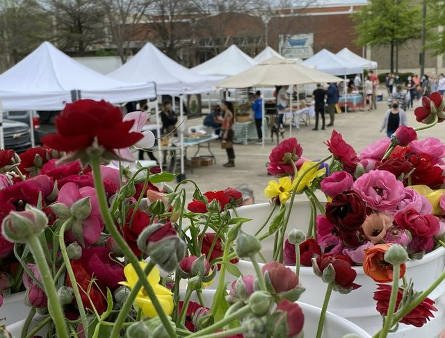 Stone Hollow flowers and market tents bg 2 copy.jpg