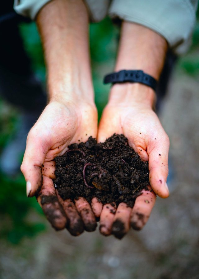 INK-BIZ-Field-Culture-Compost-CA2900.jpg
