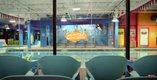 Goldfish Swim School 4.jpg