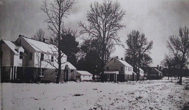 CSUN-FEAT-Amy-Peterson_1937-Photo.jpg