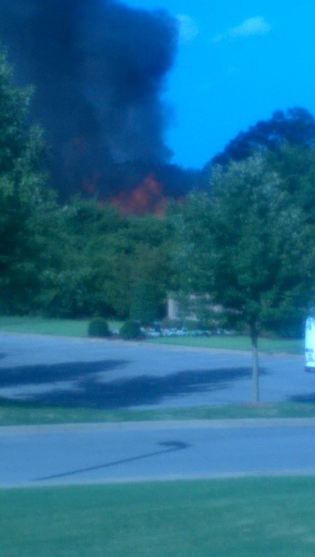 Bluff Park Fire