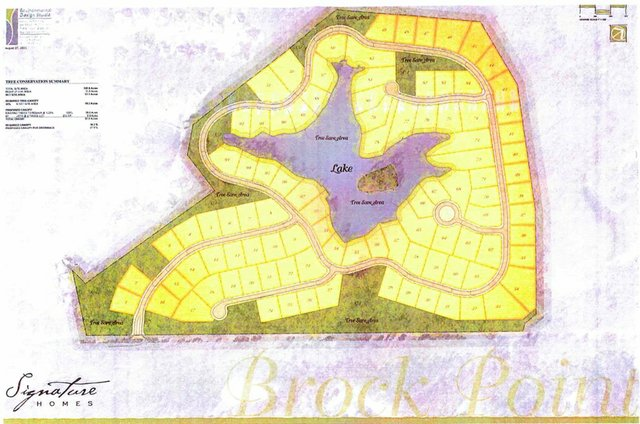 Brock Point tree conservation map