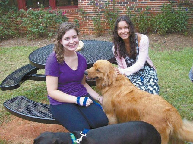 Crossroads students form Hand in Paw therapy team