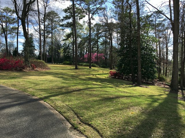 Hoover-Randle House March 2016 (30)