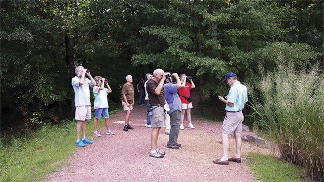SUN-EVENTS-AldridgeBirdWalk.jpg