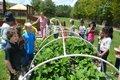 SH Riverchase Garden - 2.JPG