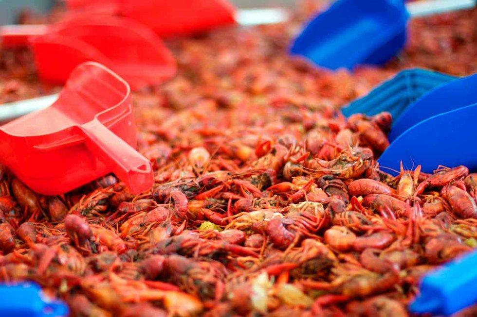 ross bridge to host hope for autumn crawfish boil hooversun com