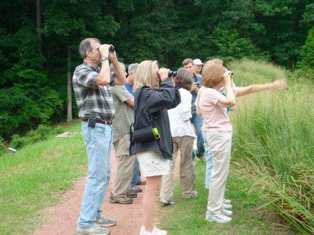Aldridge Gardens Bird Walk